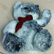 Smoke/soot damaged teddy