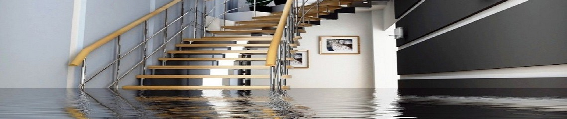 Water damage repair by Paul Davis