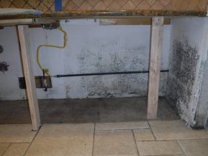 Paul Davis of Aliso Viejo provides mold remediation services